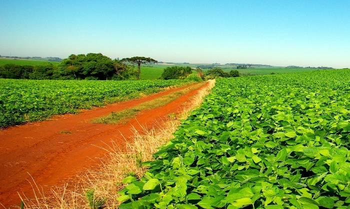 Agropecuarios